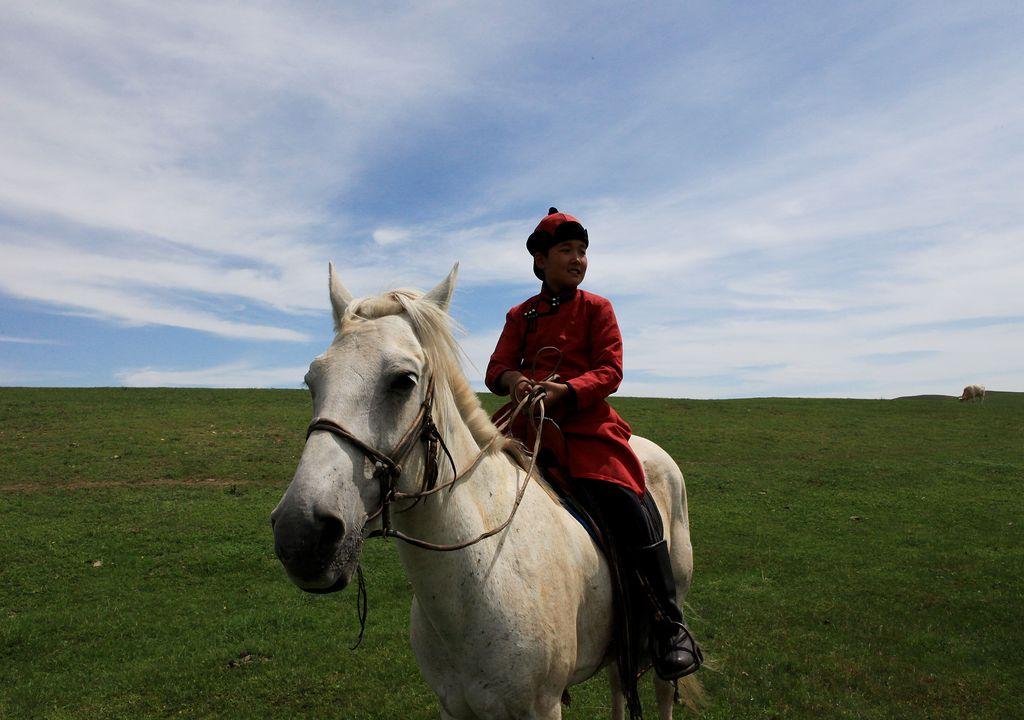 BENİM KUTSAL ATIM / MY AVATAR HORSE