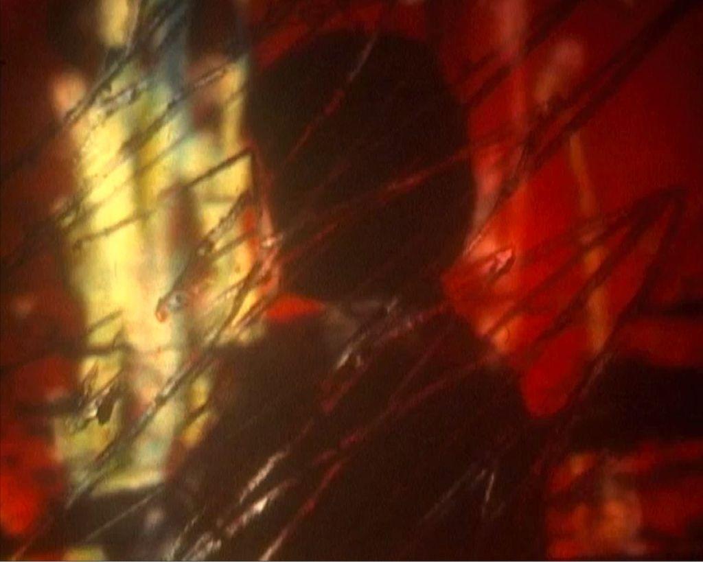 STEENBECK'LE FİLM BOYAMA / PAINTING ON FILM ON A STEENBECK