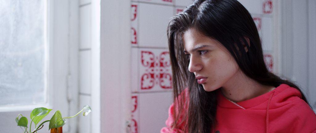 KIŞIMSI BAHAR / WINTRY SPRING / RABIE CHETWY