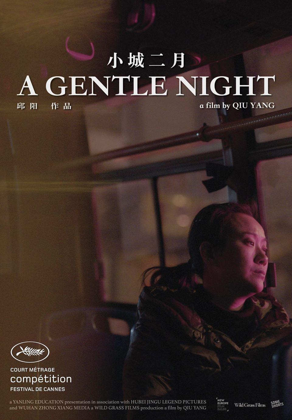 Nazik Bir Gece / Xiao Cheng Er Yue / A Gentle Night