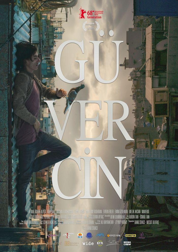 Güvercin / The Pigeon