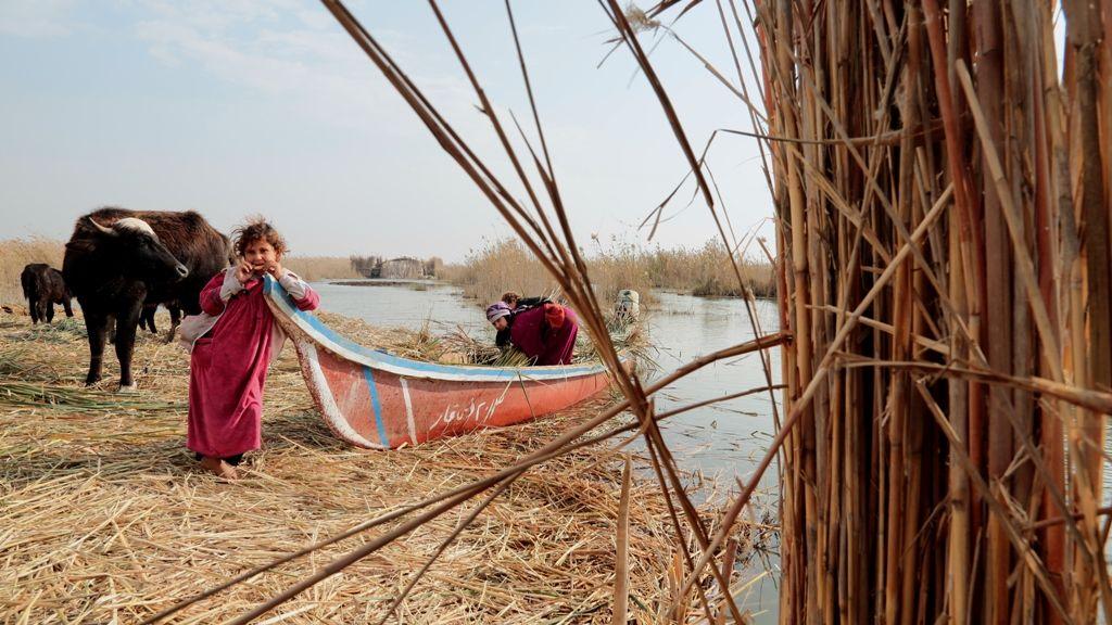 Su Bedevileri / Water Bedouins