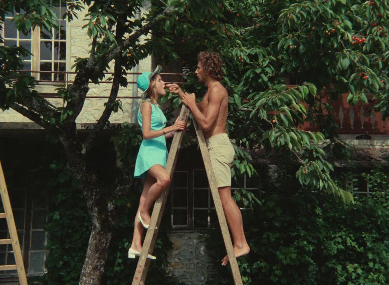 Claire'in Dizi / Claire's Knee / Le genou de Claire
